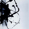 korubi's avatar