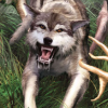 Cabela's Dangerous Hunts 2 (GCN) game cover art