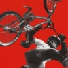 Dave Mirra Freestyle BMX 2 (GCN) game cover art