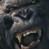 Peter Jackson's King Kong: The Official Game of the Movie (GCN) game cover art