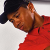 Tiger Woods PGA Tour 06 artwork