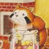 Araiguma Rascal: Racoon Rascal (SNES) game cover art