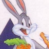 Bugs Bunny Crazy Castle artwork