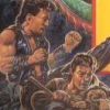 Double Dragon III: The Sacred Stones (NES) artwork