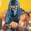 Ninja Gaiden (NES) game cover art