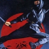 Shinobi (NES) game cover art
