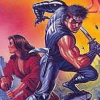 Shadow of the Ninja (NES) game cover art
