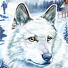 Nancy Drew: The White Wolf of Icicle Creek (PC) game cover art