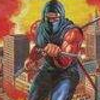 Ninja Gaiden Shadow (GB) game cover art