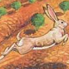 Wabbit (A2600) game cover art