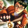 Harry Potter: Quidditch World Cup (XBX) game cover art