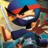 I-Ninja artwork