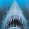 Jaws Unleashed (XBX) game cover art