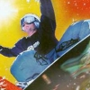 TransWorld Snowboarding (XBX) game cover art