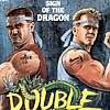 Double Dragon artwork