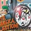 Animaniacs: Lights, Camera, Action! (GBA) game cover art