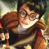 Harry Potter: Quidditch World Cup artwork