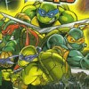 Teenage Mutant Ninja Turtles: Double Pack (GBA) game cover art