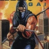 Ninja Gaiden (LYNX) game cover art