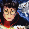 Harry Potter and the Sorcerer's Stone (PS2) game cover art