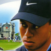 Tiger Woods PGA Tour 2003 (PS2) game cover art