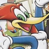 Woody Woodpecker: Escape From Buzz Buzzard Park artwork