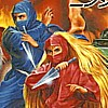 The Ninja Warriors (SCD) game cover art