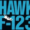 Hawk F-123 artwork