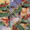 Teenage Mutant Ninja Turtles (C64) game cover art