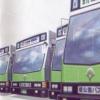 Tokyo Bus Annai artwork