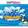 Arctic Escape artwork