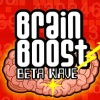 Brain Boost: Beta Wave (DS) game cover art
