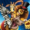Combo Pack: Madagascar 3 / The Croods artwork