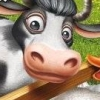 Farm Frenzy: Animal Country artwork