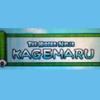 G.G Series: The Hidden Ninja Kagemaru artwork