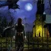 Hidden Mysteries: Salem Secrets - Witch Trials of 1692 (DS) game cover art