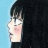 Kimi ni Todoke: Sodateru Omoi (DS) game cover art