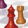Learn Chess (DS) game cover art