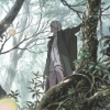 Mushishi: Amefuru Sato (DS) game cover art