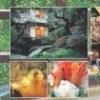 Osumitsuki Series: Matsuda Tadanori Onsen Kyouju Kanshuu - Zenkoku DokoDemo Onsen Techou (DS) game cover art