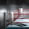 Pro Wrestling Kentei DS artwork