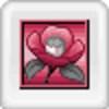Tantei Jinguuji Saburou: Tsubaki no Yukue & Nazo no Jikenbo (DS) game cover art