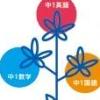 Tokutenryoku Gakushuu DS: Chuu-1 Eisuukoku Pack (DS) game cover art