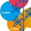 Tokutenryoku Gakushuu DS: Chuu-3 Eisuukoku Koumin Pack (DS) game cover art