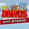 Working Dawgs: Rivet Retriever (DS) game cover art