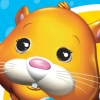 Zhu Zhu Pets (DS) game cover art