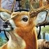 Cabela's North American Adventures artwork