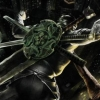 Ninja Blade (X360) game cover art
