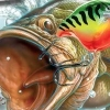 Rapala Fishing Frenzy artwork