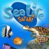 Sea Life Safari artwork